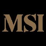 msi-international